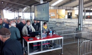 Le chariot de vente mobile et autonome pour la criée OVINS